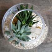 Small Globe Terrarium