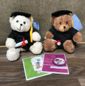 Small grad bear Please choose white or brown in special instructions