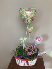 Small  I luv u mom Green and blooming plant in red white basket w  pre inflates
