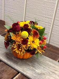 Small Pumpkin Arrangement Pumpkin in Fairfield, CT | Blossoms at Dailey's Flower Shop