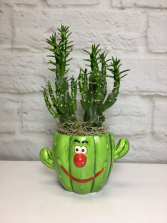 Smiling Cactus  Fun Desktop Planter