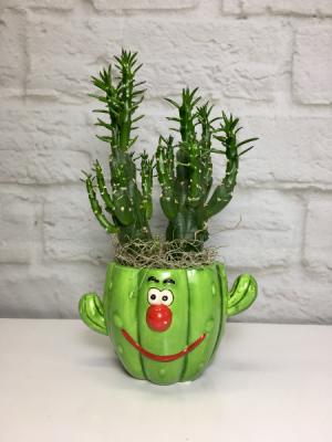 Smiling Cactus  Fun Desktop Planter  in South Milwaukee, WI | PARKWAY FLORAL INC.