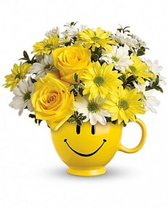 Smiling Daisies Container Arrangement in Storrs, CT | THE FLOWER POT
