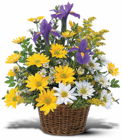 Smiling Floral Basket HF81