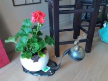Snail planter Planter