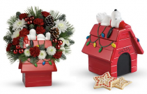 Snoopy Dog House Arrangment-LOCAL ORDERS ONLY Christmas arrangement