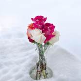 Snow blooms  1/2 doz mix roses