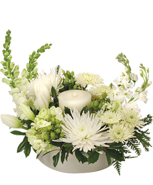SNOW WONDER Arrangement in Middletown, NY | ABSOLUTELY FLOWERS