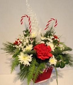 Snowy Candy Cane Fresh flower arrangement