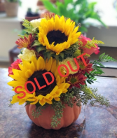 **SOLD OUT** Bright Sunflower Pumpkin Arrangement