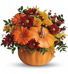 Somethin' Pumpkin Fresh Keepsake Arrangement