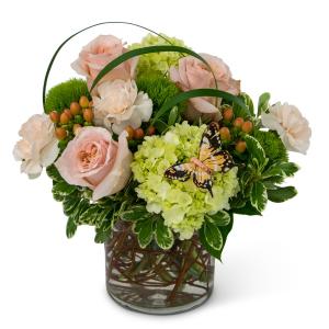 Song of Gratitude Arrangement in Swannanoa, NC | The Asheville Florist