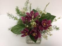 sophisticated! Mini cymbidium orchids in cube vase