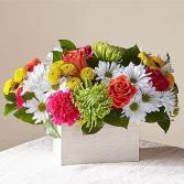 Sorbet Bouquet by FTD