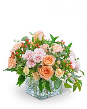 Sorbet Sparkle Flower Arrangement in Nevada, IA | Flower Bed