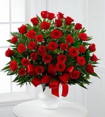 Soul of Splendor Red Roses EF61