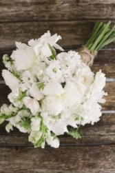 SOUTHERN WHITE HANDHELD BOUQUET