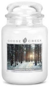 Sparkling Woods Large Jar Candle candle