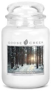 Sparkling Woods Large Jar Candle candle
