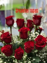 Speaking roses One dozen roses with I Love you printed on the roses