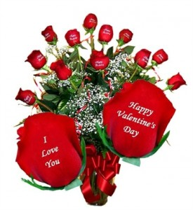 Let our Roses Speak for you Valentines Day in Albany, NY | CENTRAL FLORIST