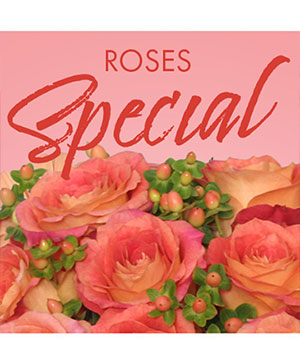 Special of Roses Designer's Choice in Farmville, VA | Rochette's Florist