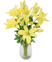 Special - Yellow Asiatic Lilies in a Vase