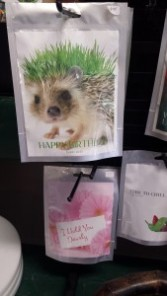 Gift-Seed cards