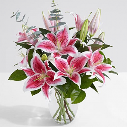 Special Pink Lilies