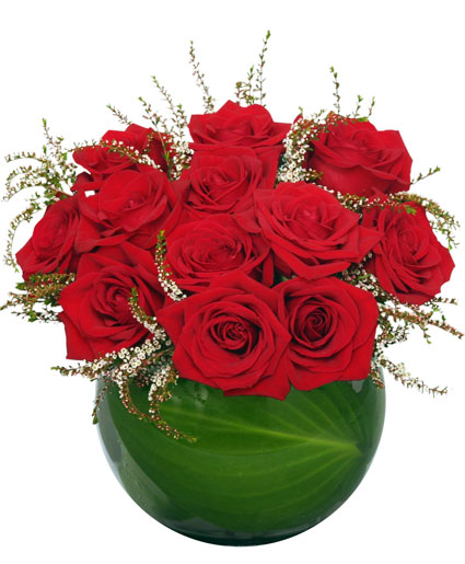 Spellbound Roses Red Rose Arrangement In Saginaw Tx Whistle Stop