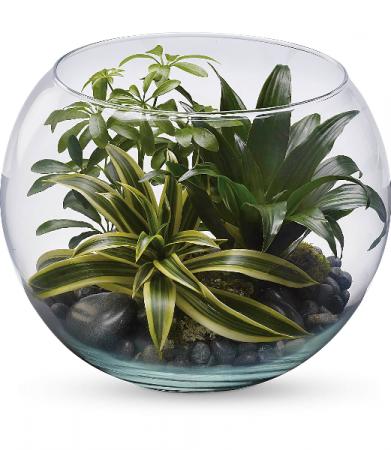 Sphere of Tranquility Terrarium HPL021A