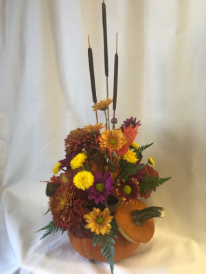 Spiced Pumpkin Fresh Arrangement in Coleman, WI | COLEMAN FLORAL & GREENHOUSES