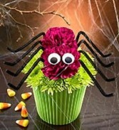 Spider Cupcake in Bloom Spooktacular