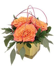 Spirited Bliss Floral Design