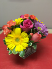 Splash of colour Floral arrangement