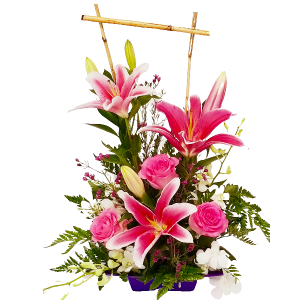 Splash of Pinks Dish arrangement in Coral Springs, FL | Hearts & Flowers of Coral Springs