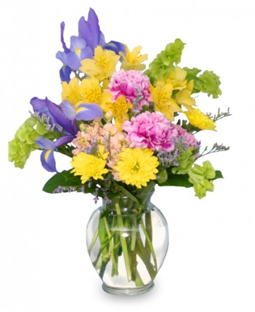 Splash of spring flowers in a vase in bellaire oh bellaire flower splash of spring flowers in a vase mightylinksfo