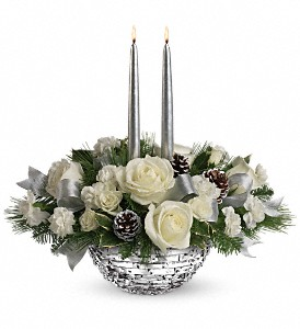 Splendid In Silver Holiday-Christmas