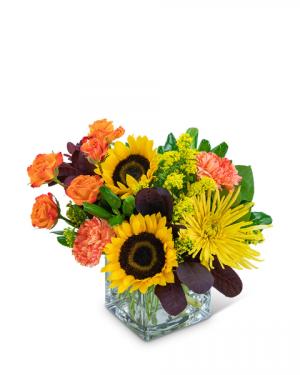 Splendid Sun Flower Arrangement in Nevada, IA | Flower Bed