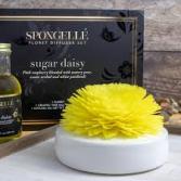 Spongelle Sugar Daisy Diffuser