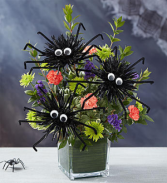 Spooktacular Spiders