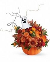 Spooky Arrangement
