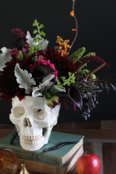 Spooky Halloween Designers Choice Halloween