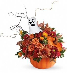 Spooky Pumpkin Surprise  in Presque Isle, ME | COOK FLORIST, INC.