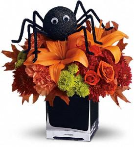 Spooky Sweet Halloween