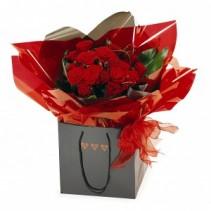 Spray Roses Arrangement in a gift bag **HOT PICK ITEM**