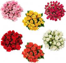 Spray Roses Bunch