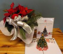Spread Christmas Joy LovePop card with poinsettia
