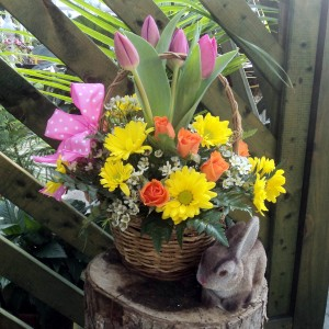 Spring Basket of Blooms Basket Arrangement in North Adams, MA | MOUNT WILLIAMS GREENHOUSES INC