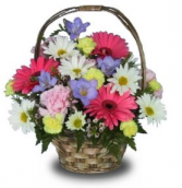 Spring Basket of flowers